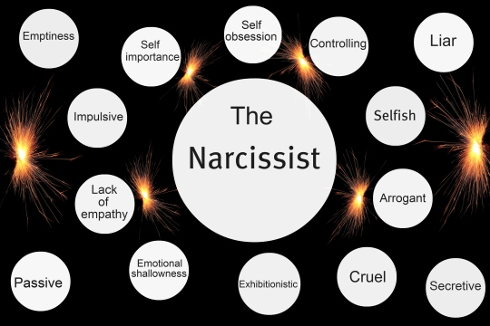 Image result for cartoons narcisstic personality disorder npd